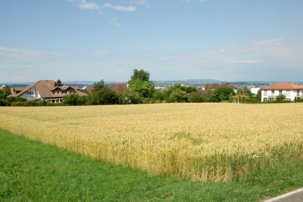 Grundstück Verkaufen Tägerwilen Bürgergemeinde Kreuzlingen