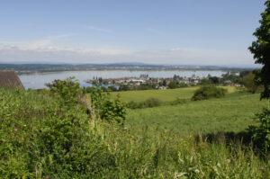 Grundstueck Zu Verkaufen Immobilien Salenstein Thurgau Bodensee Ostschweiz Immobilienmakler Fehr Immobilien Villa