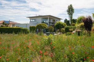 West Ansicht Von Der Freihaltezone Her Einfamilienhaus Verkaufen